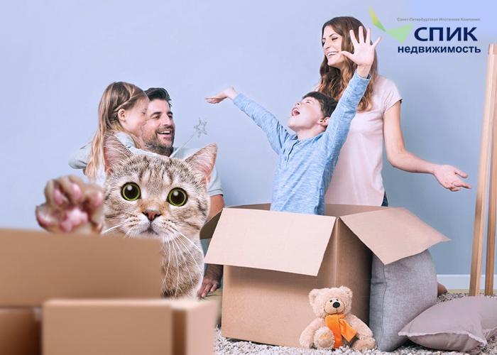 Зачем требуется согласие супругов на покупку недвижимости